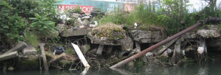 Pollution on the Gowanus