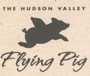flying-pig_195