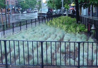 City Greening