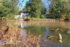 The Lower Esopus Creek