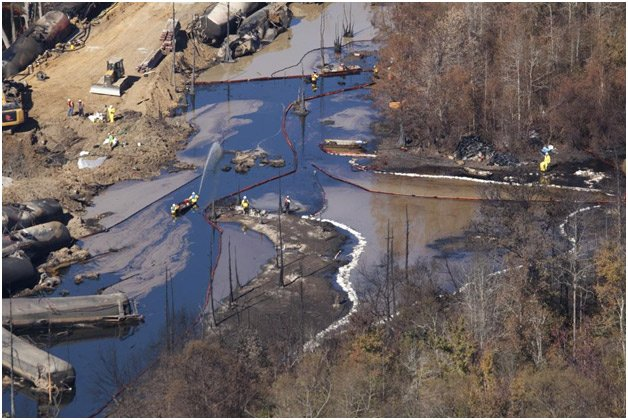 Oil-soaked wetlands in Aliceville, Ala., following a November 2013 spill of Bakken crude oil following a train derailment. Photo by John Wathen, Hurricane Creekkeeper.
