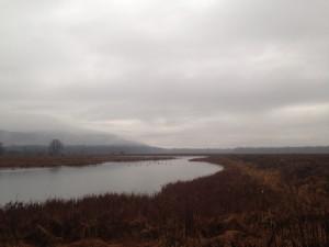 The Wallkill River National Wildlife Refuge-crDanShapley_5765