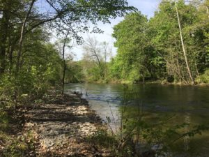 Esopus Creek