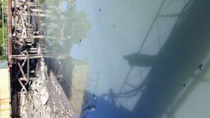 Flushing Bay Murk