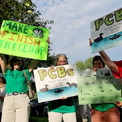 Tell EPA: Don't Shutdown the PCB Cleanup