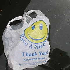 Tell Governor Cuomo:  Don't break your promise on plastic bags