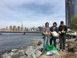 plastic pollution data from Transmitter Park