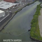 Maspeth Marsh