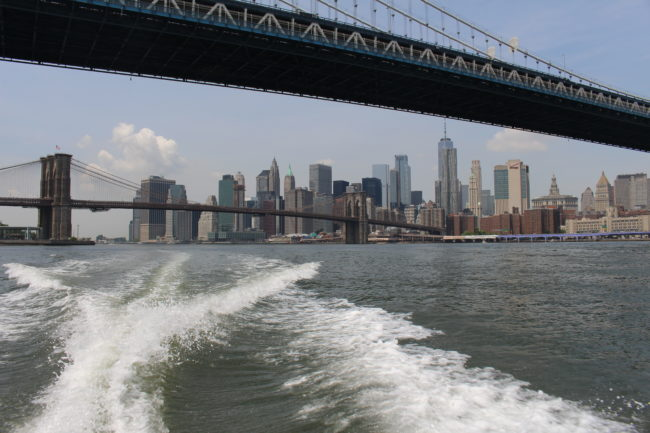 """Seaport City"" would bury East River fish"