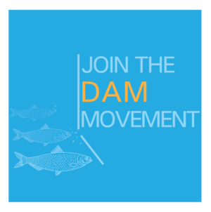 Join the Dam Movement