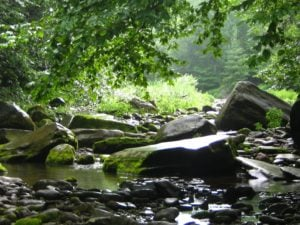 stream protections