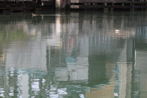 Gowanus_surface