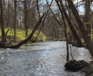 NY lawmakers pass bill to protect 41k miles of at-risk streams