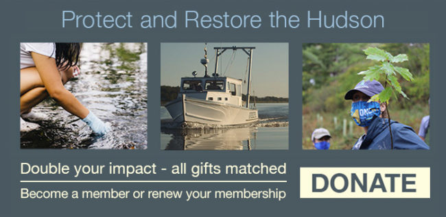 Protect and restore the Hudson